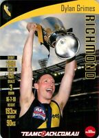 ✺New✺ 2019 RICHMOND TIGERS AFL Premiers Card DYLAN GRIMES Teamcoach
