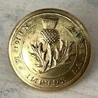 *RARE* Civil War Button ~ Washington Light Infantry Charleston SC