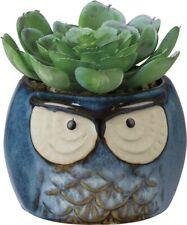 New!~Blue Stoneware Owl Succulents Botanical Planter Decor~Dish/Container/Plan t