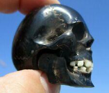 Schädel skull aus Büffelhorn geschnitzt - Zähne aus Bein Unterkiefer beweglich !