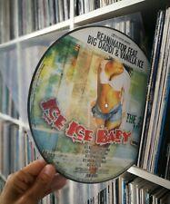 "Reanimator feat. Big Daddi & Vanilla Ice - Ice Ice Baby - 12"" Picture-Vinyl RAR"