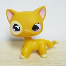 Littlest Pet Shop #855 Orange Yellow SHORT HAIR CAT Purple Moon Eyes Bat Eyes D1