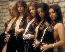 "Pans People 10"" x 8"" Photograph no 30"