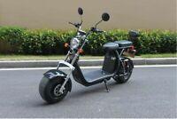 Scooter Électrique Citycoco El-Roller 1500W 20AH Eec / Coc