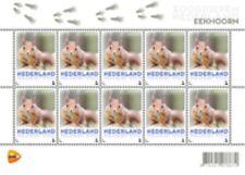 Nederland 2013  eekhoorn Squirrel eichorn V3013  postfris-mnh