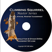 Learn Squirrel Taxidermy Training on DVD for Beginners, NEW!