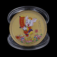 Year of the Pig Souvenir Coin Chinese Zodiac Collection Coin Lucky CharacteB kq