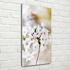 Wand-Bild Kunstdruck aus Acryl-Glas Hochformat 70x140 Kirschblüten