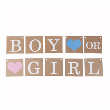 Boy Or Girl Baby Shower Party Hanging Garland Gender Reveal Bunting Banner TH