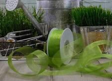25m organzaband (0,12 €/m) banda bucles boda verde claro primavera 25mm