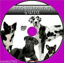DOG GROOMING VIDEO DVD GUIDE STEP BY STEP CLEANING BATHING DRYING NAIL CLIPPING