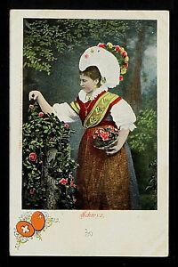 SWITZERLAND 334-SUIZA- Schroyz (Undivided Back (c. 1901-1907)