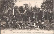 Chasse à Courre en Forêt de FONTAINEBLEAU (77) - La Meute au Rendez-vous