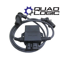 Polaris Sportsman 700 (2002-04) CDI Ignition Coil Controller & Plug Caps 4010696