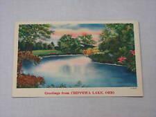 1953 Greetings from Chippewa Lake Ohio Beautiful Vintage Painting Linen Postcard