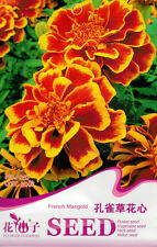 1 Pack 50 Peacock Grass Flower Heart Seed Marigold Tagetes Patula Flowers A257