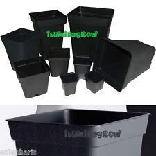 Maceta Cuadrada Negra 3L - 5,5L - 7L- 11L - 20L Litros con o sin Plato