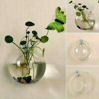 Glass Vase Wall Hanging Flower Pot Hydroponic Terrarium Fish Tank Planter Decor
