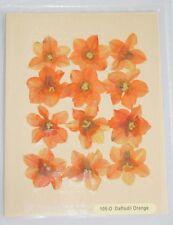 Daffodil Orange Real Pressed Flower Embellishments