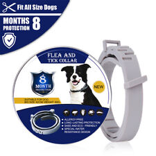 Pet Dog Cat Collar Personalised Pet Collar Flea & Tick 8 Months Protection NEW