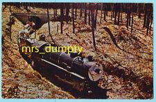 MI Fairview~Pinconning & Blind River Steam Engine Mini Train~Michigan POSTCARD
