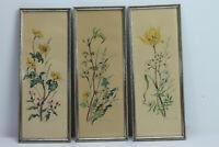 Set 3x Wandbild Bild Aquarell Vintage Blumen floral 60er 50er