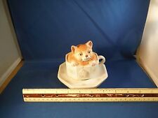 "Tea Cup Kitten  ""Memory"" Music Box"
