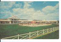 CA-138 PA, Palmyra, Palmyra Motel Chrome Postcard Exterior View from Fence