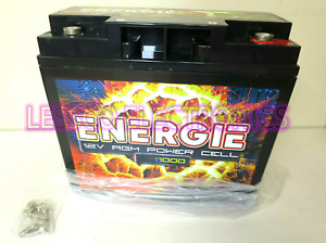 Energie ER1000 Power Cell Source Reikken Car Battery 12 Volt / 1000 Watt Sealed