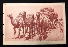 VINTAGE 1930 S SCUOLA POSTER grafico stampa CAMEL Treno in Australia Nº 94