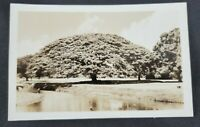 River Landscape People Playing Vintage RPPC Postcard (Unposted)