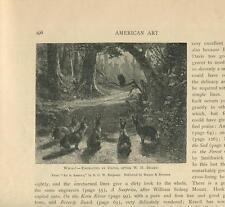 ANTIQUE BUNNY RABBIT ANIMAL FAMILY OWL WOODS SUNLIGHT SHADOWS FOREST ART PRINT