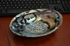 "BIG LARGE BLUE POLISHED ABALONE SEA SHELL HALIOTIS FULGENS 7"" - 7 1/2"" #7429A"