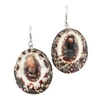 """1 3/16"""" COOL & UNIQUE GENUINE LIMPET SHELL DANGLING earrings"""