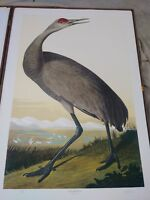 m. bernard loates limited edition signed lithograph