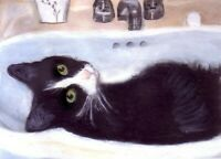BCB Tuxedo Cat Cool in the Sink Print of Painting ACEO 2 1/2 x 3 1/2 Inches