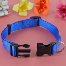 Collier (standard) bleus en nylon pour chien