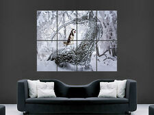 HUSKY POSTER FOREST SNOW TREE NATURE WILD ANIMAL DOG IMAGE HUGE LARGE WALL ART