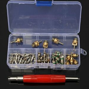 50 A/C R12/ R134A Core Valves Automotive Air Conditioning Assortment&Remover Kit
