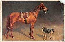 Beautiful Horse by German Shepherd Dog on Old Foreign Postcard