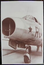 AVIATION, PHOTO AVION, INSIGNE TETE DE PANTHERE SUR LE FUSELAGE