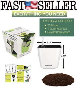 "Window Garden 5"" Aquaphoric Self Watering Planter Pot W/ Fiber Soil - NEW! FAST!"