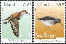 Iceland 2004 Sandpiper/Dunlin/Birds/Nature/Wildlife/Conservation 2v set (n16091)