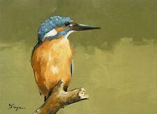 Original Oil painting - wildlife - bird art - kingfisher  - by j payne