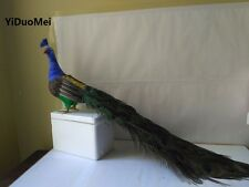 cute beautiful feathers peacock big simulation peacock model about 80cm