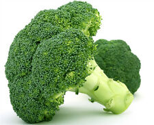 Broccoli Seed 50 Seeds Brassica Oleracea Green Cauliflower Vegetable Seeds C007