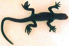 Gecko Toy Green & Brown Growing Gecko to 600% original size from 4 to 20 inches