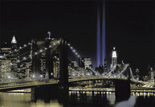 Murale Parete NEW YORK Twin Tower LUCI Foto Carta Da Parati WALL ART 366x254cm Nero