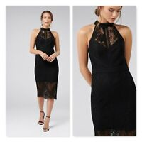 FOREVER NEW Womens Size 12 Lena High Neck Lace Bodycon Dress NEW + TAGS
