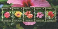 Micronesia - Hibiscus Stamp - Sheet of 5 MNH